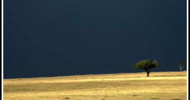 A typical Mara rainstorm scene near Paradise Plains