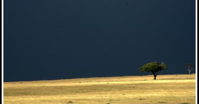 A typical Mara rainstorm scene near Paradise Plains